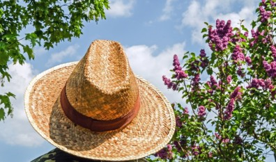 Trouver le chapeau qui vous va